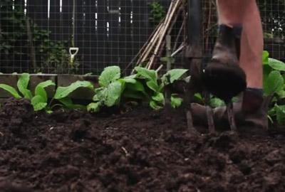 Beete Umgraben So Geht Es Richtig Gartenfrase Expertegartenfrase Experte